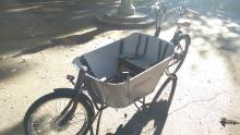Babboe City Mountain E-cargobike
